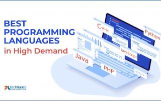 Best Programming Languages in High Demand