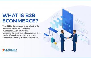 What is B2B eCommerce